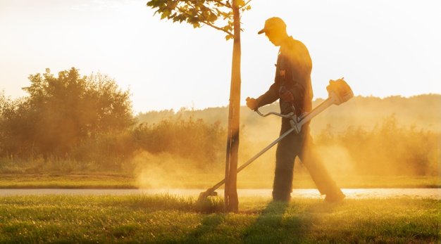 commercial grounds maintenance